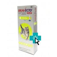 Bravecto Plus Gatos 1.2-2.8 kg